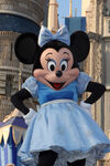 Minnie Mouse in Dream Along with Mickey