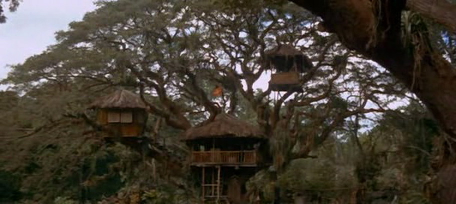 Swiss Family Treehouse Swiss Family Robinson Disney