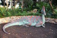 Corythosaurus DAK