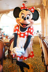 Minnie Mouse at Disneyland Character Breakfast