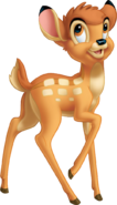 Bambi looking