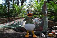 Donald Cretaceous Trail