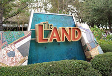 The-land1