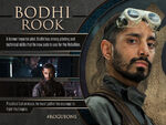 Bodhi Rook Profile