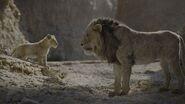 Scar & Simba Gorge