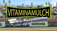 Vitaminamulch Air Spectacular logo