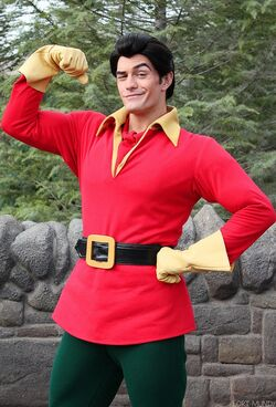 Gaston at Disney parks in wintertime