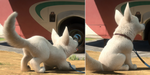 Bolt breed comparison