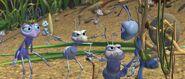 Bugs-life-disneyscreencaps.com-648