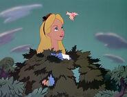 Alice in Wonderland Party Crashers