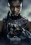 Black Panther Character Posters 02