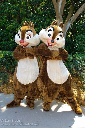 Chip and Dale Disney Wiki