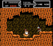 Terra-Firmie King NES~2