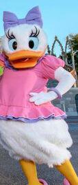 Articulated Daisy