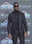 Sterling K. Brown Black Panther premiere