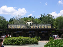 The Oasis at Disney's Animal Kingdom