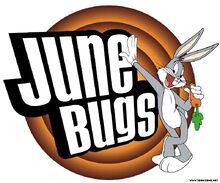 Junebugs