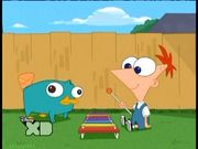 Litle Perry