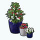FourthOfJuly - Red White and Blue Planters