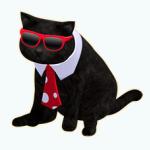 PetsCostumes - Snazzy Salem