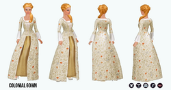 Historical - Colonial Gown