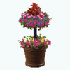 EarthDay - Tiered Flower Pot