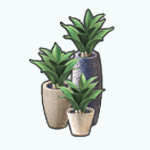 DareDay - Decorative Cacti