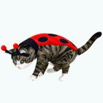 PetsCostumes - Marv Bug
