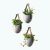 ModernNordicBathroomDecor - Hanging Wall Plants