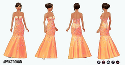 Prom - Apricot Gown
