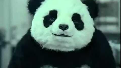 Funny Panda Cheese Commercials