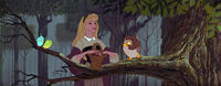 Sleeping-beauty-disneyscreencaps.com-2930