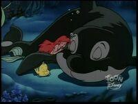 Whale108