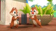 MMC - Chip and Dale 02