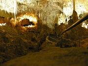 240px-Carlsbad Caverns rail pic