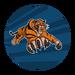 TigerStrike