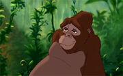 Tarzan070-1-