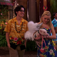Two lovers with their pig!