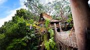 Tarzan's Treehouse (DL)