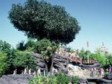 La Cabane Des Robinson (Disneyland Paris)