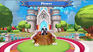 Ws-flower
