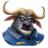 C-chief bogo