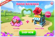 Bc-rose stand-promo-2