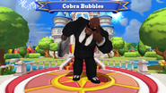 Ws-cobra bubbles