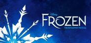 Frozen Musical Banner