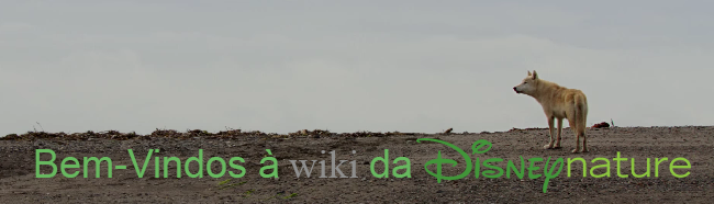 Disneynature wiki welcomes