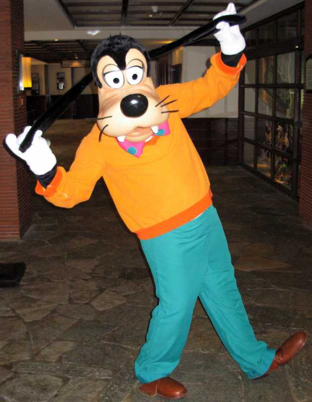 Goofy From Mickey Mouse Costume
