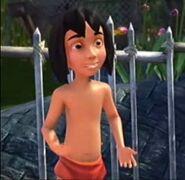 Mowgli KDA
