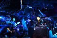 JTTCOTE-Tokyo DisneySea 02