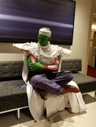 Awesome+piccolo+cosplay 90ca98 6402875